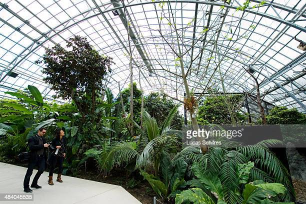 Visitors observe animals roaming freely in the new glasshouse of the new Zoological Park of Paris on April 8 2014 in Paris France After 6 years of...