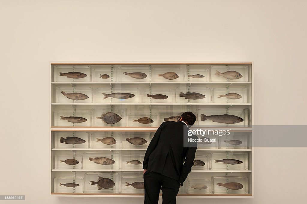 Visitors observe Damien Hirst's 'Isolated Elements Swimming in the Same Direction for the Purpose of Understanding' artwork at the Relics Exhibition by Damien Hirst at Al Riwaq space next to Doha's Museum of Islamic Art on October 9, 2013 in Doha, Qatar.