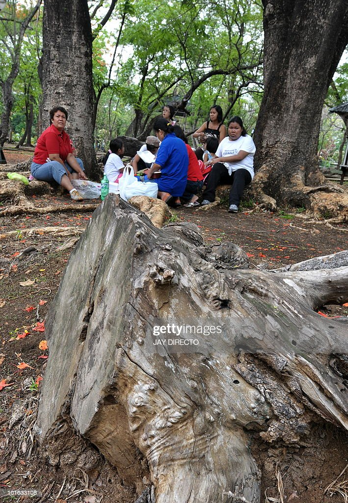 Visitors picnic next to a dead tree at the Ninoy Aquino Park during World Environment Day in Quezon City, suburban Manila on June 5, 2010. The World Environment Day, commemorated each year on June 5, is one of the principal vehicles through which the United Nations stimulates worldwide awareness of the environment and enhances political attention and action.