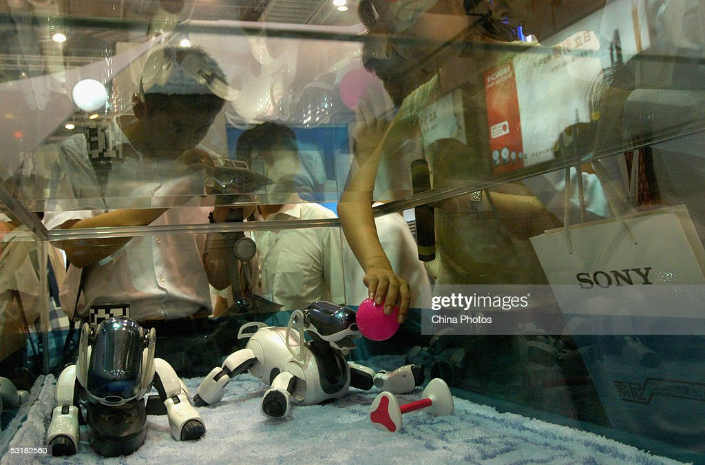 Visitors play with Sony robot dogs at the International Consumer Electronics Expo July 1, 2005 in Qingdao of Shandong Province, China. More than 310 domestic and overseas enterprises including Haier, Lenovo, Sony, Toshiba and Lucent attend the expo, showcasing new technology and products related to consumer electronics as well as the new trends of global industrial development.