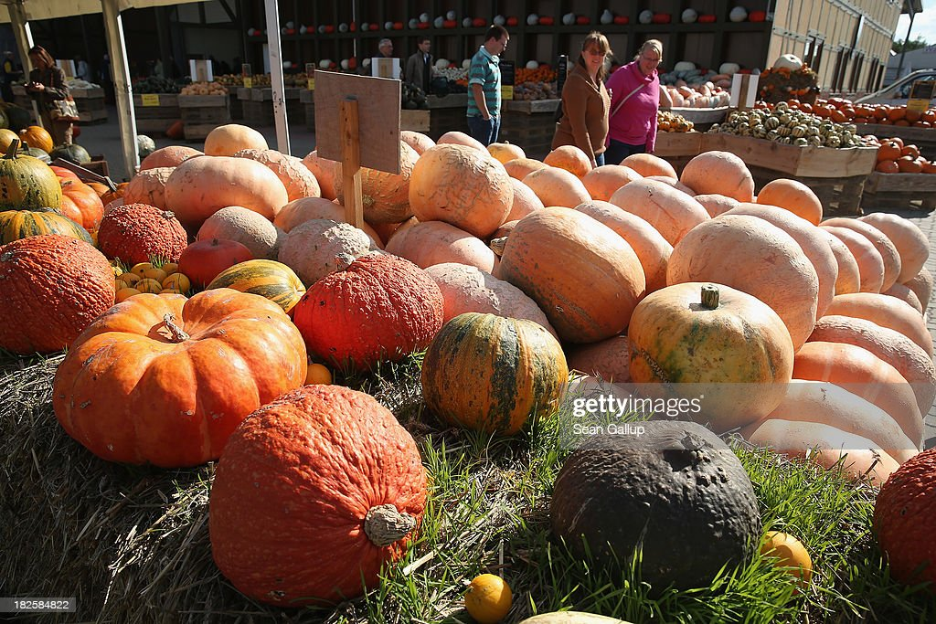 Pumpkin weighing 1 ton is largest fruit ever grown ...