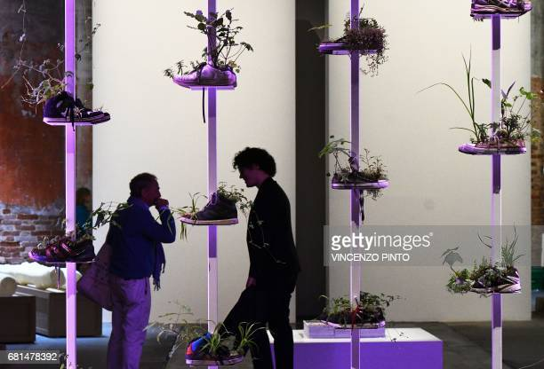 Visitors stand next to the 'Collection de chaussures' by French artist Michel Blazy on May 10 2017 in Venice during the press preview of the 57th...