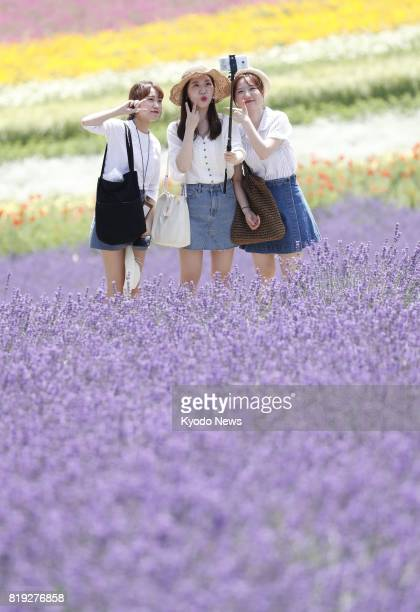 Visitors take a selfie in fields of lavender flowers blooming at Farm Tomita in Nakafurano on the northernmost Japanese main island of Hokkaido on...