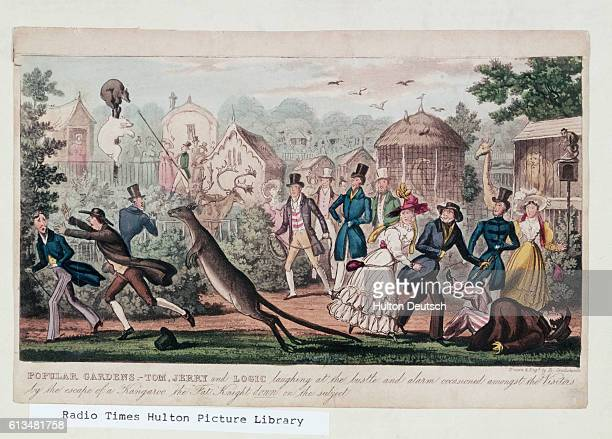 Visitors to Regent's Park London flee from an escaped kangaroo in an early 19th century illustration