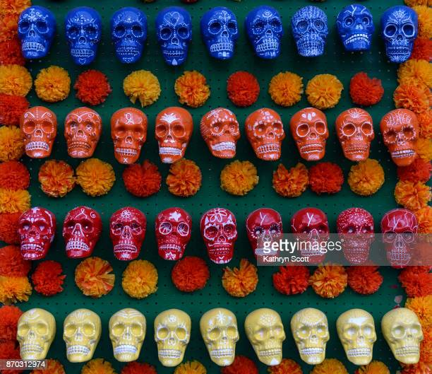 Visitors to the Denver Botanic Gardens celebrate 'Dia de los Muertos' Day of the Dead on November 4 2017 in Denver Colorado