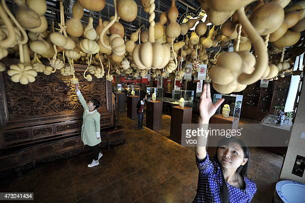 Visitors view calabash artworks at a newlyopened calabash museum on May 13 2015 in Tianjin China Tianjin opened its first calabash museum featuring...