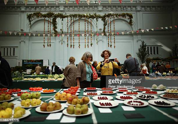 Visitors view fruit and vegetables displayed at the Royal Horticultural Society Harvest Festival Show on October 9 2013 in London England The...