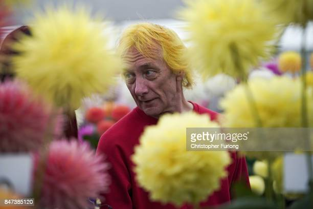 Visitors view some of the prize winning flowers on show at the Harrogate Autumn Flower Show on September 15 2017 in Harrogate England Gardeners and...