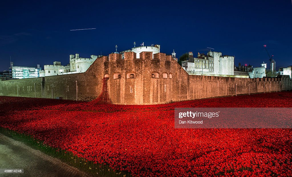 Visitors view the 'Blood Swept Lands and Seas of Red' installation at the Tower of London on November 7, 2014 in London, England. The installation by artists Paul Cummins and Tom Piper will eventually consist of 888,246 ceramic poppies - representing each of the commonwealth servicemen and women killed in the first world war.