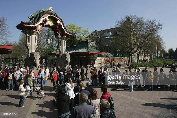 Visitors wait in lines to enter the Berlin Zoo on April 12 2007 in Berlin Germany Thousands of visitors come every day to see Knut the baby polar...