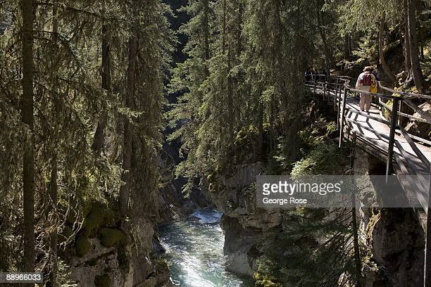 Visitors walk along a scenic steep canyon near Johnston Falls located off the Bow Valley Parkway as seen in this 2009 Banff Springs Canada early...