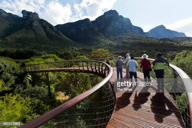 Visitors walk along the new 'Boomslang' at Kirstenbosch Botanical Gardens on May 19 2014 in Cape Town South Africa Boomslang opened yesterday The...