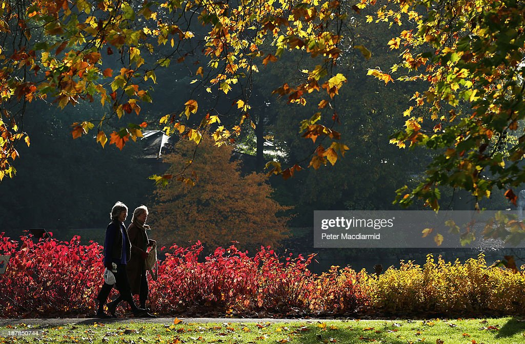 Visitors walk in the Royal Botanic Gardens, Kew on November 13, 2013 in London, England. Autumn's colours are showing later in the season this year due to a record cold spring.