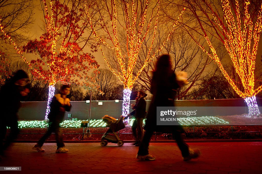 Visitors walk on the main alley of the National Zoo, decorated for the forthcoming holidays in Washington DC, December 20, 2012.