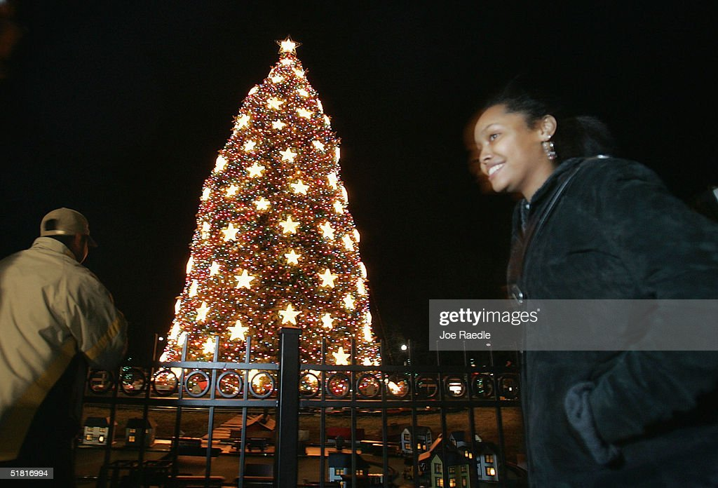 Visitors walk past the 81st National Christmas Tree on the Ellipse December  2, 2004 in