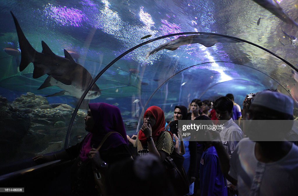 Visitors walk through a tunnel in a tank at Aquaria KLCC in Kuala Lumpur on February 11, 2013. The state-of-the-art oceanarium at Aquaria KLCC showcases over 5,000 exhibits of aquatic and land-bound creatures over a sprawling 60,000 square-foot space located in the Concourse Level of the Kuala Lumpur Convention Centre.
