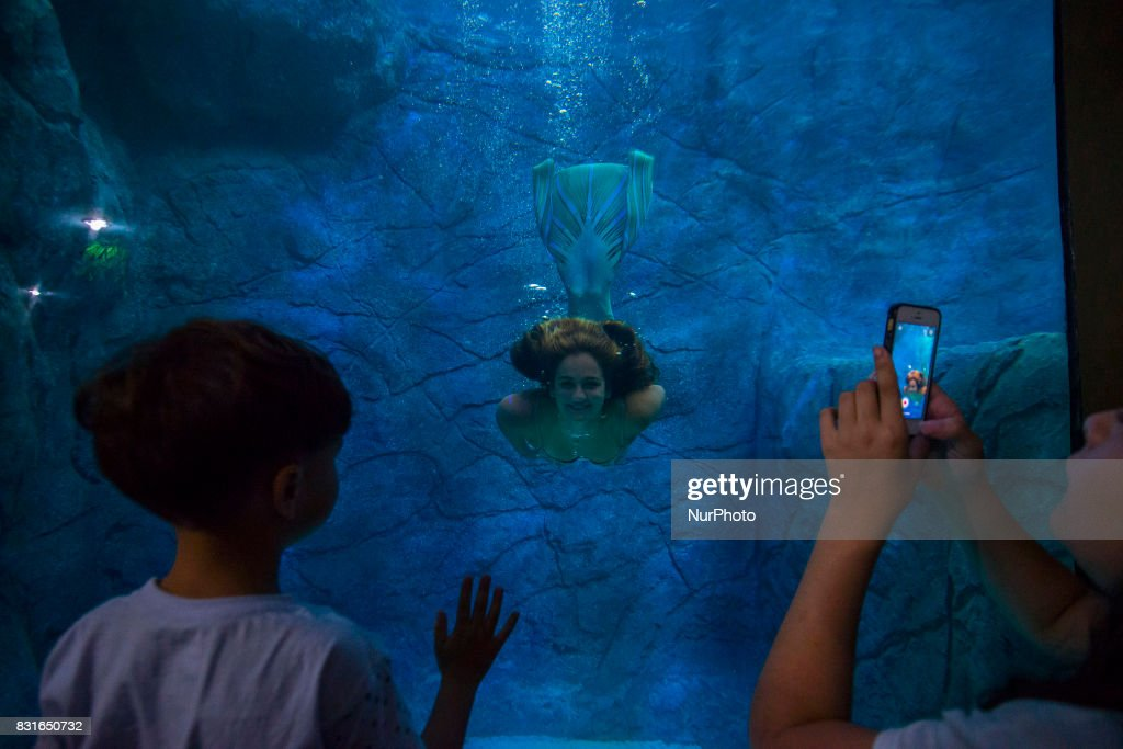 Visitors watch several mermaids while they swim in a giant tank during a show at an aquarium in Sao Paulo, Brazil, on August 14, 2017.