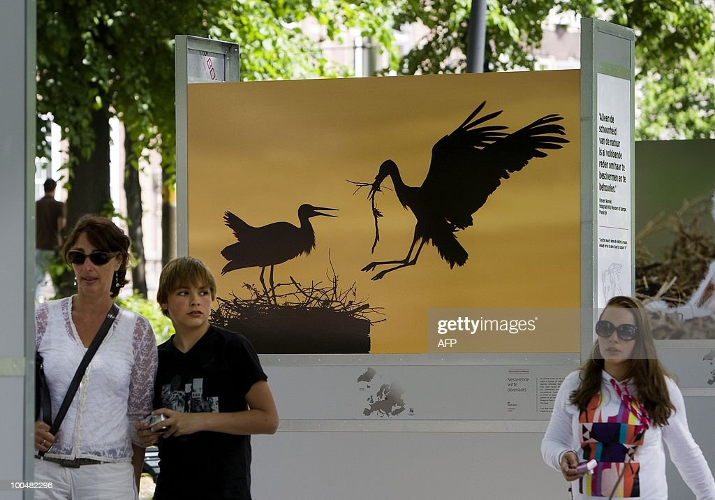 Visitorswalk past a poster in preparation for the exhibition Wild Wonders of Europe, on the Lange Vijverberg in The Hague, The Netherlands, on May 24, 2010. The free, open air photo exhibition shows more than a hundred life size nature pictures by sixty-nine photographers. AFP PHOTO ANP ROBERT VOS netherlands out - belgium out
