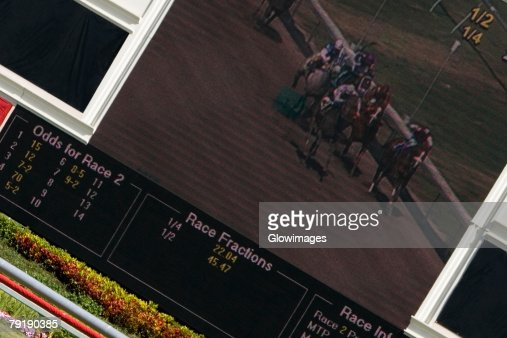 Visual screen in a horse racing stadium : Stock Photo