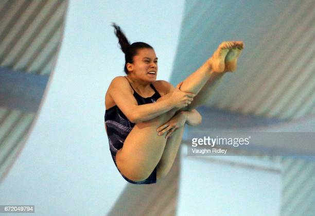 Viviana Del Angel Peniche of Mexico competes in the Women's 10m Final during the 2017 FINA Diving World Series at the Windsor International Aquatic...