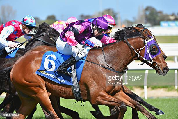 Vlad Duric riding So He Does wins Race 3 during Melbourne Racing at Caulfield Racecourse on September 19 2015 in Melbourne Australia