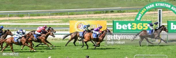 Vladivostok ridden by Jamie Mott wins the CLSA Australia Ltd BM58 Handicap at Kyneton Racecourse on October 17 2017 in Kyneton Australia