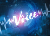 voice recognition and verification technology