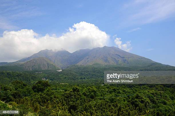 A volcanic plume rises from Mount Sakurajima on August 15 2015 in Kagoshima Japan Residents of parts of Kagoshima city were warned to prepare to...