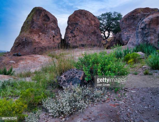 Volcanic Rocks`