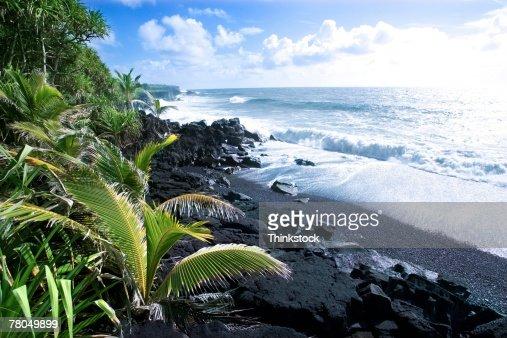 Volcanic shoreline in Hawaii