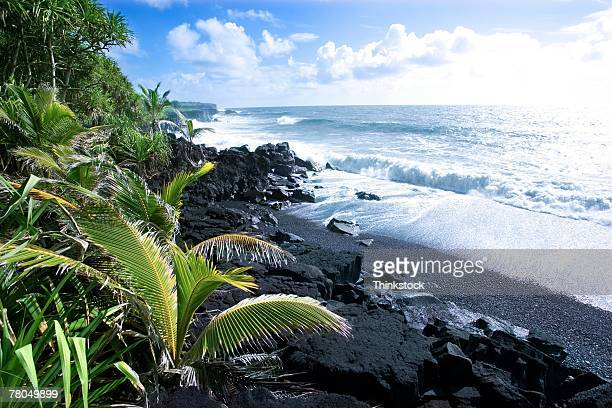 Volcanic shoreline in Hawaii