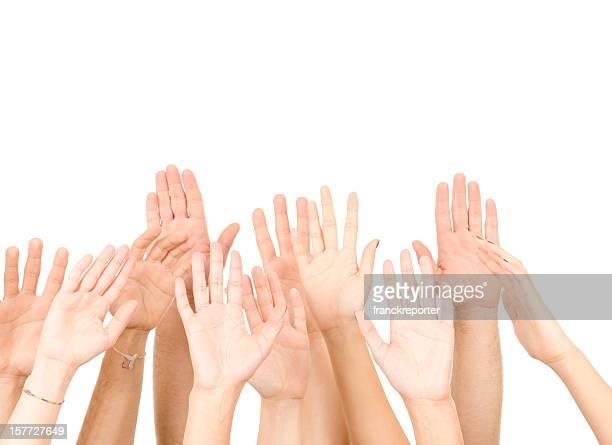 Volunteer arm raised on white background