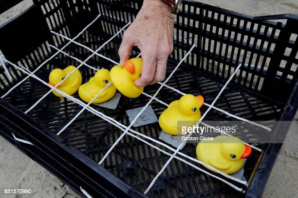 Volunteer Blair Walker records the top 5 rubber ducks during the Allens Pond Duck Derby on Barney's Joy Farm in South Dartmouth MA on Aug 12 2017 In...