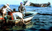 Volunteer fishermen attempt to clear oil from the waters off San Cristobal 23 January 2001 in the Galapagos Islands after the Ecuadoran oil tanker...