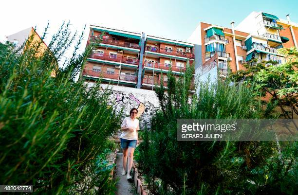 CUENCA A volunteer gardener walks between plants at the urban and community garden 'Esta es una Plaza' in Madrid on June 17 2015 'For me and for many...