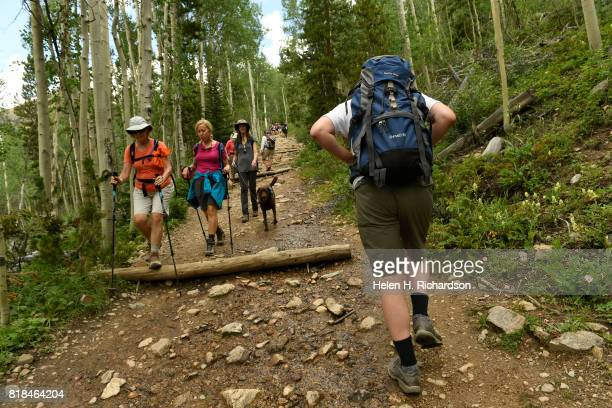 Volunteer Karl Granrath with Trout Unlimited carries a backpack full of 18 yearling Greenback Cutthroat up the Herman Gulch trail on July 17 2017 in...
