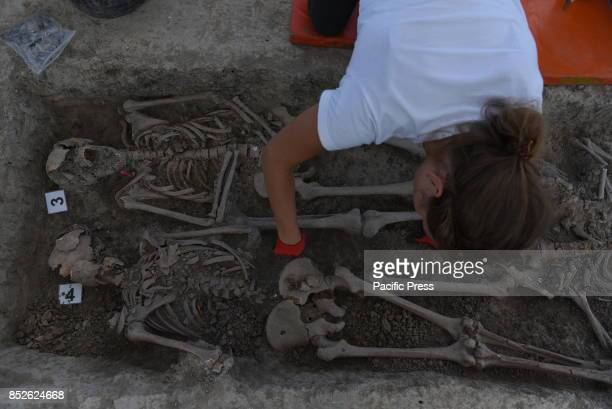 A volunteer of the association 'Aranzadi' pictured searching for the remains of seven people murdered by proFranco forces in 1936 and placed in a...