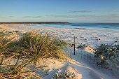 Volunteer Point Beach, Falkland islands