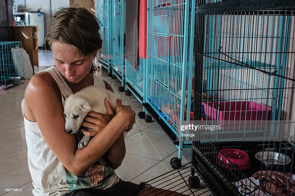 Volunteer takes care of a puppy at Bali Animal Welfare Association (BAWA) clinic on March 15, 2013 in Ubud, Bali, Indonesia. According to data from the Bali Animal Welfare Association (BAWA), the dog population in Bali is approximately 600,000. Many are reported to suffer from malnourishment and poor health.