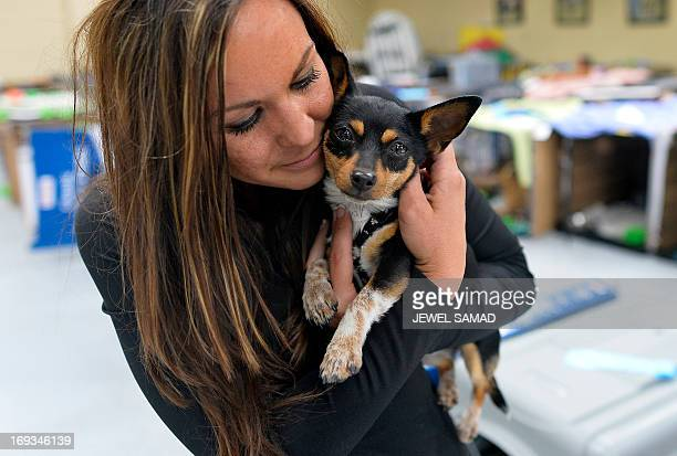 Volunteer Tiffany Pacheco pets a dog at an animal shelter for tornado displaced pets on May 23 2013 in Moore Oklahoma Monday's tornado in this...