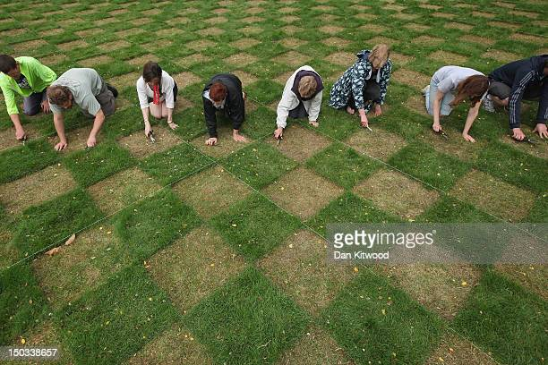 Volunteers cut a large scale checkerboard design using just hairdressing scissors in the grass lawn at the National Trust's Ham House and Garden as...