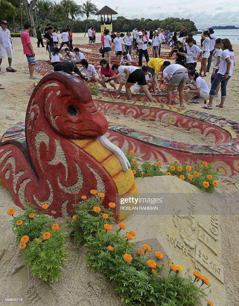Volunteers give the finishing touches to a snake sand sculpture exhibited at the first sandy spring floral festival on Sentosa Island's Palawan beach off Singapore on February 4, 2013. The sand snake sculpture decorated with coloured-dye sand took approximately 240-man-hours to create and is on display in conjunction with Valentine's Day. The exhibition also features Chinese zodiac animals to celebrate the Lunar new year. AFP PHOTO / ROSLAN RAHMAN