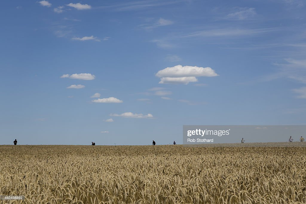 Volunteers look for wreckage from Malaysia Airlines flight MH17 in a wheat field on July 20, 2014 in Grabovo, Ukraine. Malaysia Airlines flight MH17 was travelling from Amsterdam to Kuala Lumpur when it crashed killing all 298 on board including 80 children. The aircraft was allegedly shot down by a missile and investigations continue over the perpetrators of the attack.