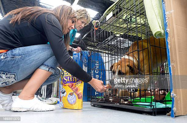 Volunteers Paula McCoart and Tiffany Pacheco feed dogs at an animal shelter for tornado displaced pets on May 23 2013 in Moore Oklahoma Monday's...