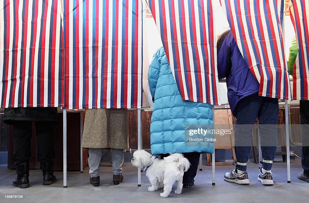 Voting was brisk as the polls opened at a fire station on Lexington Avenue in Cambridge on Election Day, Tuesday, November 6, 2012. Shi Tzu, Buster, 4, waited while his owner did her civic duty.