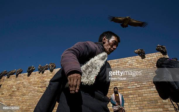 Vultures that are used to consume the bodies of the dead in a traditional ritual called 'sky burial' are seen at the Tibetan Buddhist site during a...
