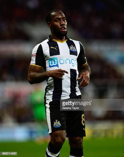 Vurnon Anita of Newcastle United during the Sky Bet Championship Match between Newcastle United and Burton Albion at StJames' Park on April 5 2017 in...