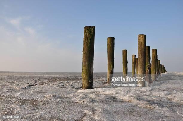 Wadden Sea ice
