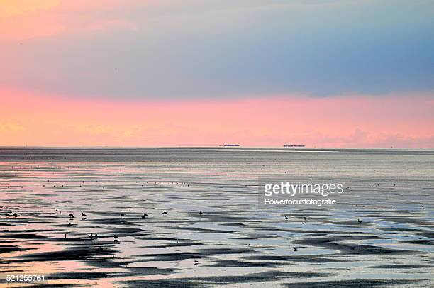 Wadden Sea like a painting