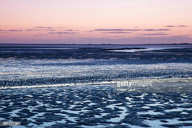 Wadden Sea mudflats during low tide at dusk